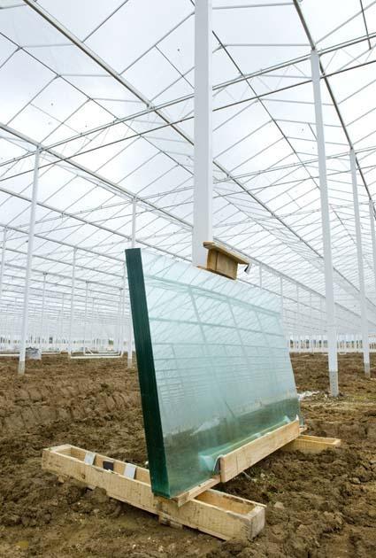 Greenhouse Glass Sligo Glass