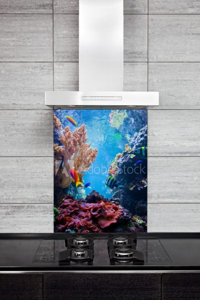 Sea Reef Splash Back