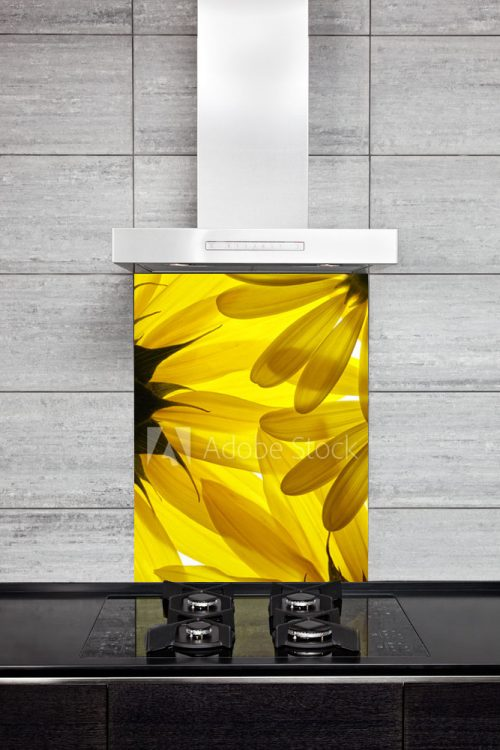 Kitchen Splashback Sunflower