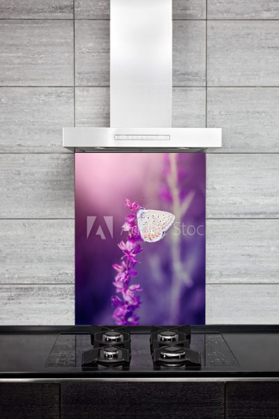 Kitchen Splashback Butterfly