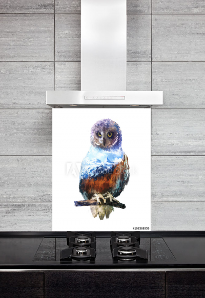 Kitchen Splashback Owl Illustration