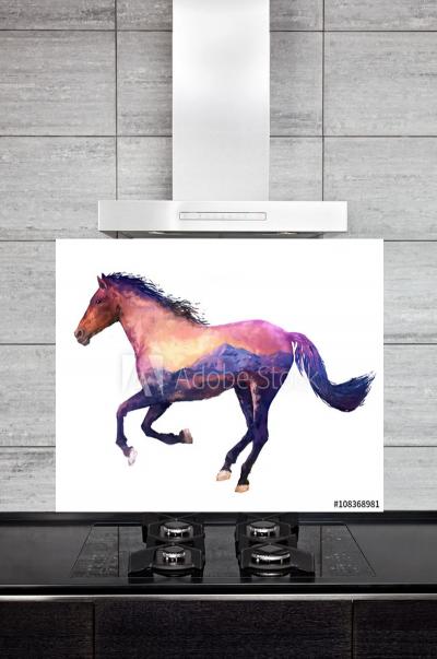 Kitchen Splashback Horse Illustration