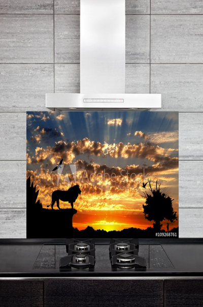 Kitchen Splashback Savanna