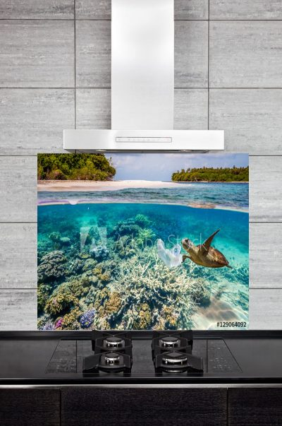 Kitchen Splashback Coral Reef and Turtle