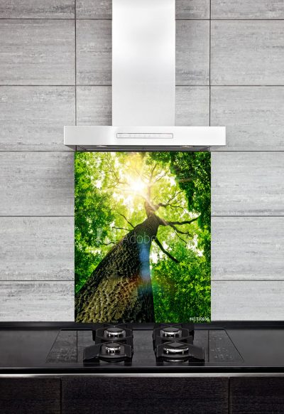 Kitchen Splashback Forest