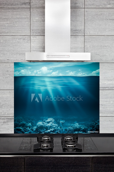 Kitchen Splashback Underwater Coral Reef
