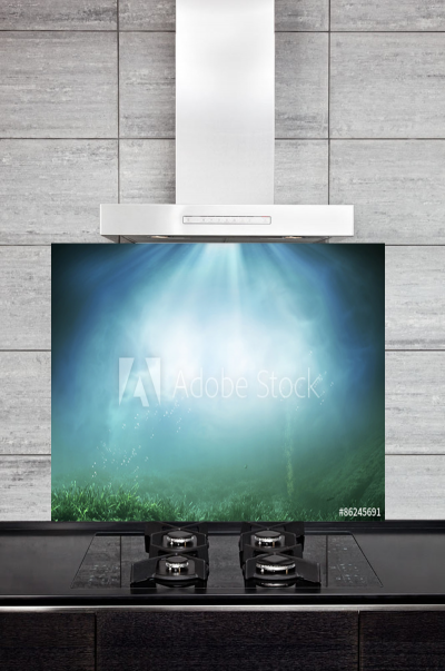 Kitchen Splashback Underwater Illustration