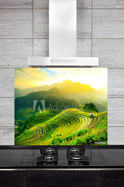 Kitchen Splashback Rice Fields